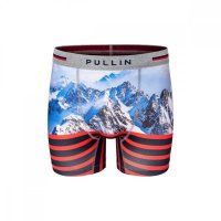 Pullin Trunk Fashion 2 Boxershort Mountainstripe